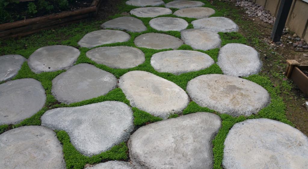 DIY Cement Yard Stones