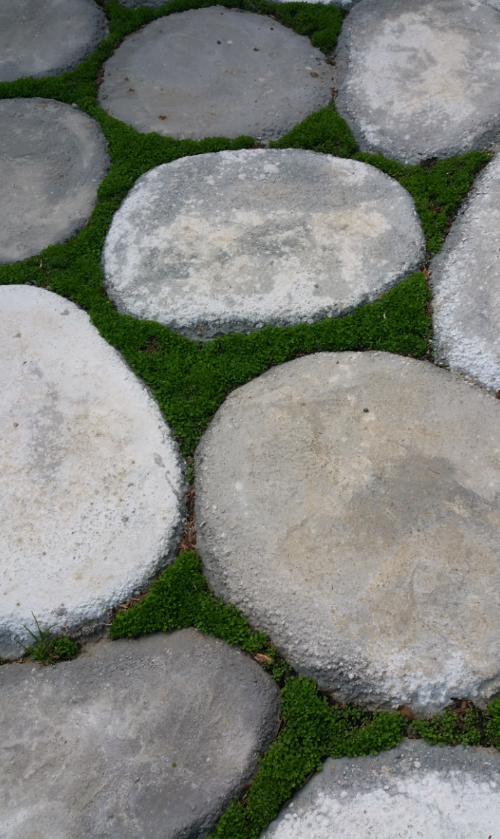DIY Cement Yard Stones closeup