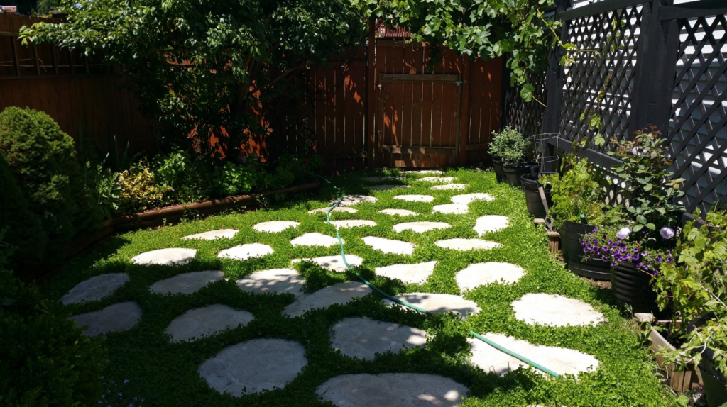 DIY Cement Yard Stones with clover